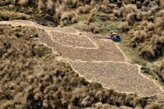 Bolivia - Yungacruz - trail - oca 54