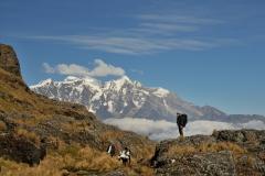 Bolivia - Yungacruz - trail - Illimani 57