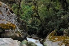 Bolivia - Camino de Oro 38