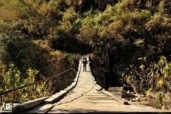 Bolivia - Camino de Oro - bridge 40