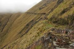 Bolivia - Sorata - Mapiri - trail 25