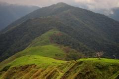 Bolivia - Sorata - Mapiri - trail 22