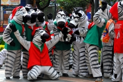 Bolivia - people - La Paz - zebras 32