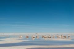Bolivia - Salar de Uyuni - salt lake - water 7